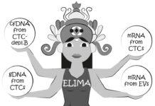 ELIMA